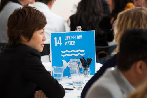 Two participants discuss SDG 'Life below water' in a conference setting