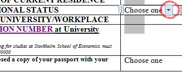 FAQ-scholarships for master's studies   Swedish Institute